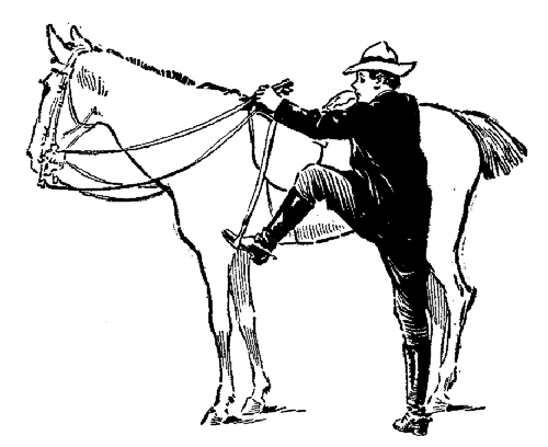 The wrong way to mount a horse—facing forward