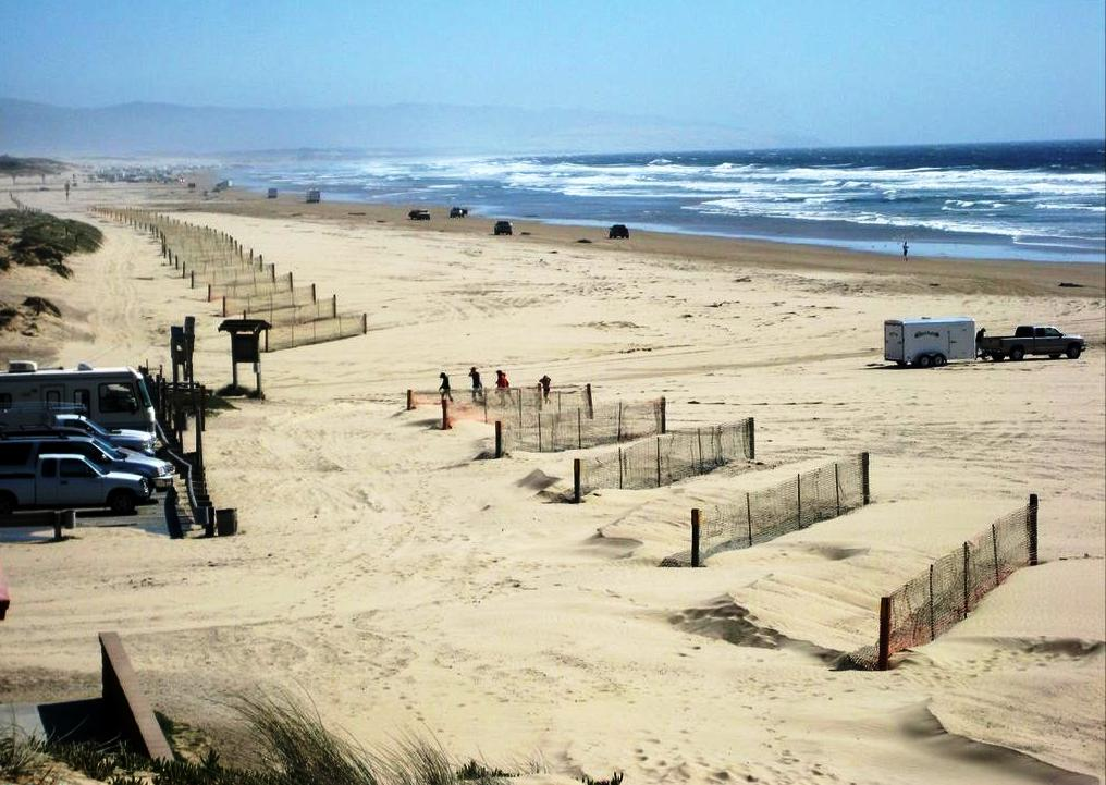 Pismo California State Parks On The Beach Guide To
