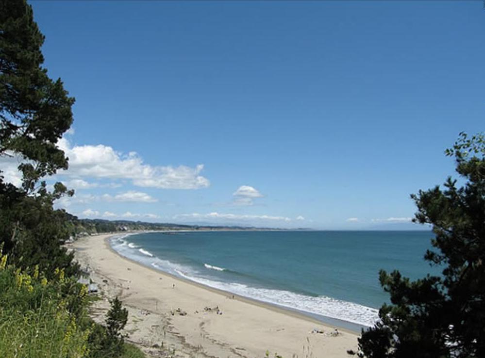 New Brighton State Beach In Capitola California
